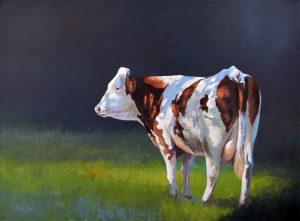 Koe bij Neerpelt