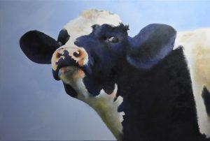 Koe uit Eckelrade